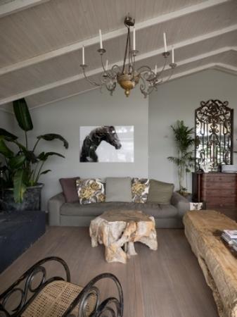 main-room-horse